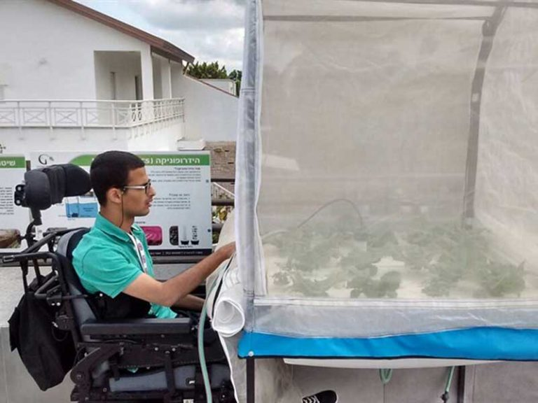 Hydroponics in special education