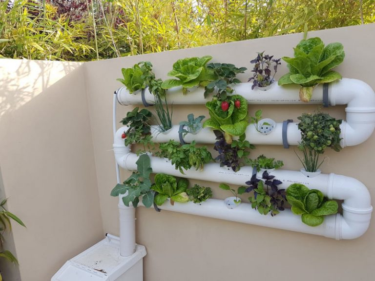 Vertical NFT Hydroponics system on the balcony