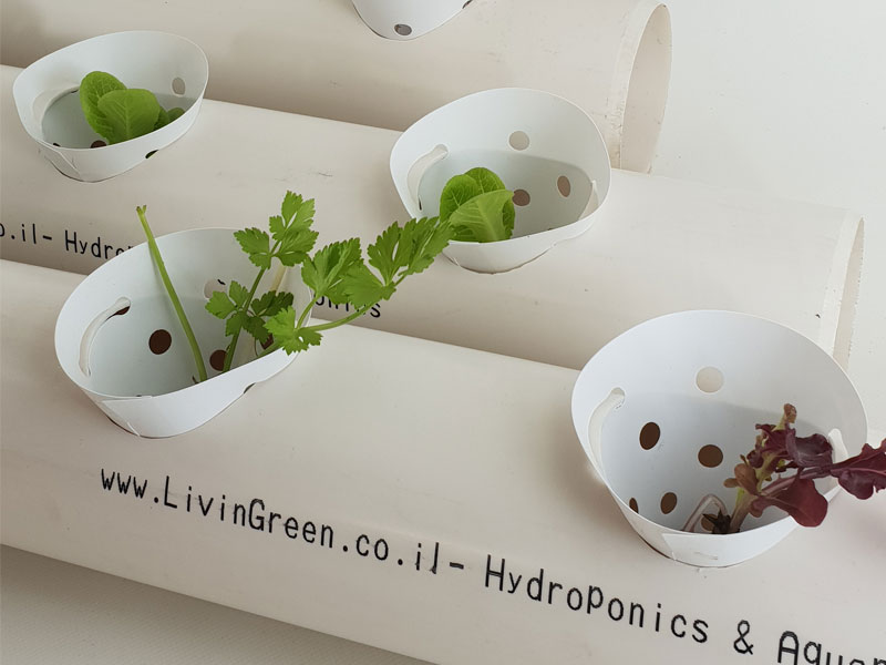 NFT hydroponics pipes to grow leafy greens