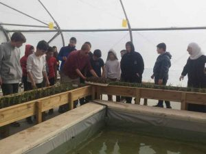 Science class aquaponic project