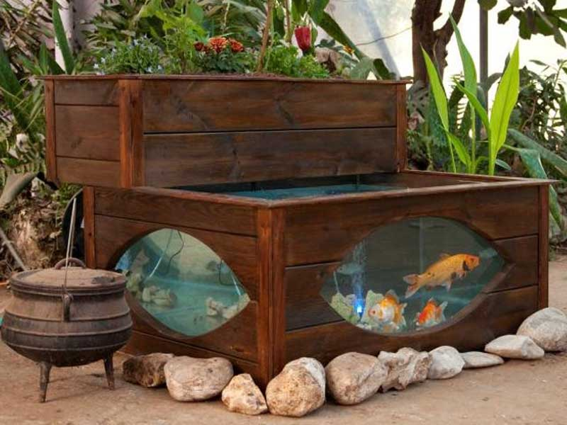 Aquaponics system for the garden