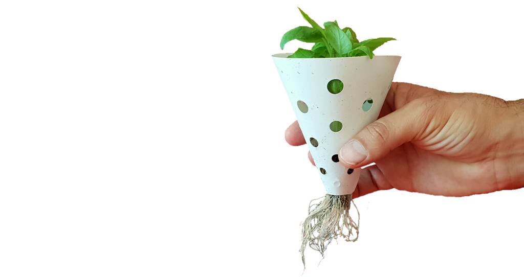 Hand holding net cup with basil