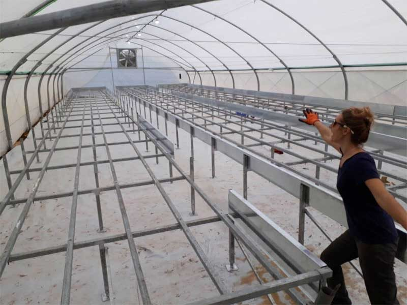 Building a commercial hydroponics farm